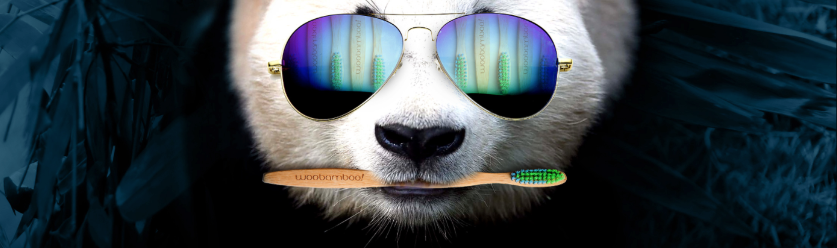 panda-eco-green